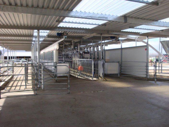 Yard Design: Dairy Yard Design
